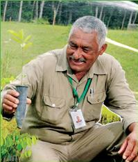 Vale plants about six million native trees every year in Brazil throughout its mining operations